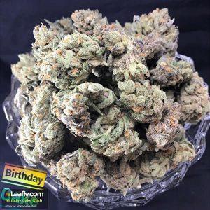 High Grade Marijuana Strain - Birthday Cake Kush - San Diego (CA)