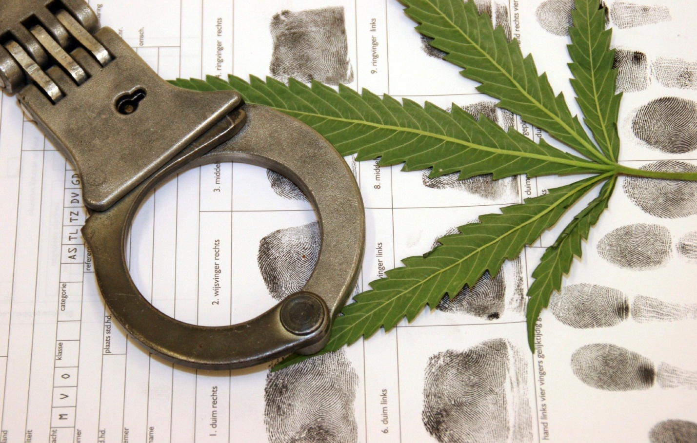 Crimes under the influence of marijuana