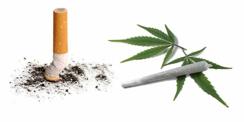 Marijuana vs cigarettes
