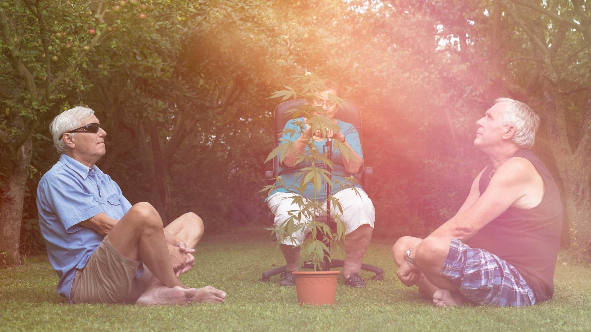 Why Do So Many Old People Smoke Weed?