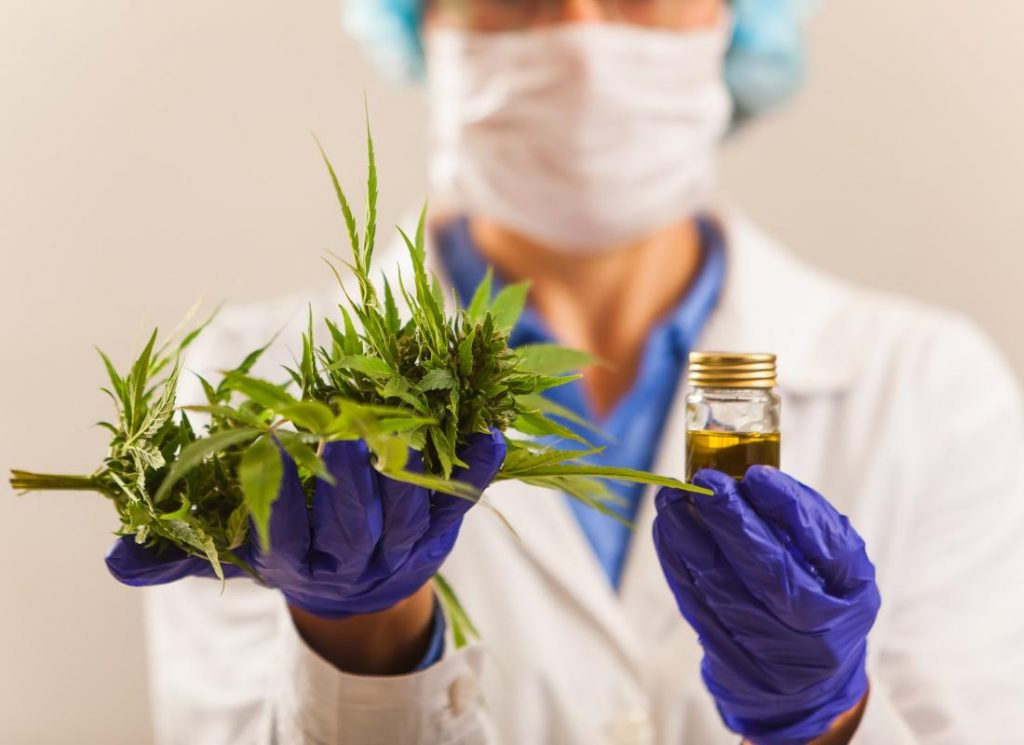 Does weed enhance chances to catch coronavirus