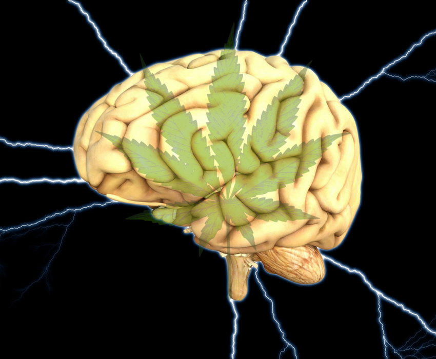 Cannabis in Injured Brain