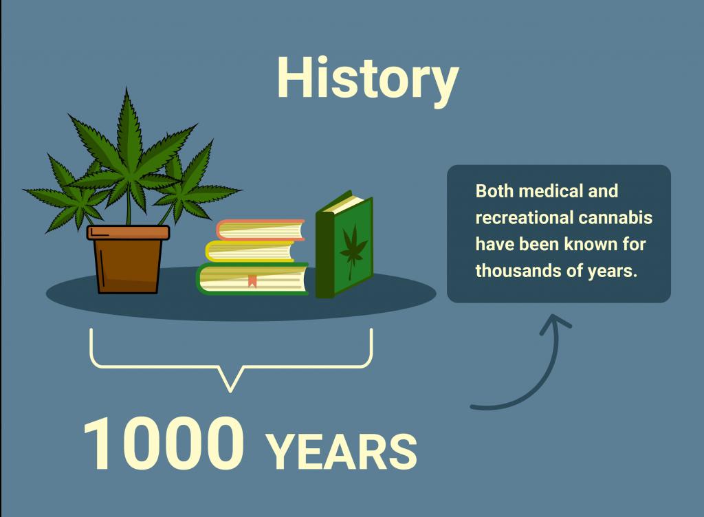 History of marijuana 1000 years