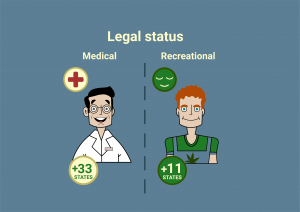 What Is The Difference Between Medical And Recreational Weed