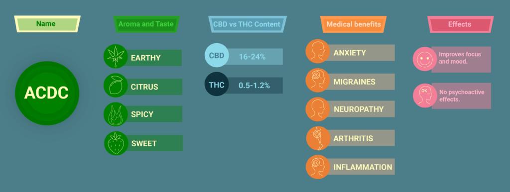 acdc cbd strain
