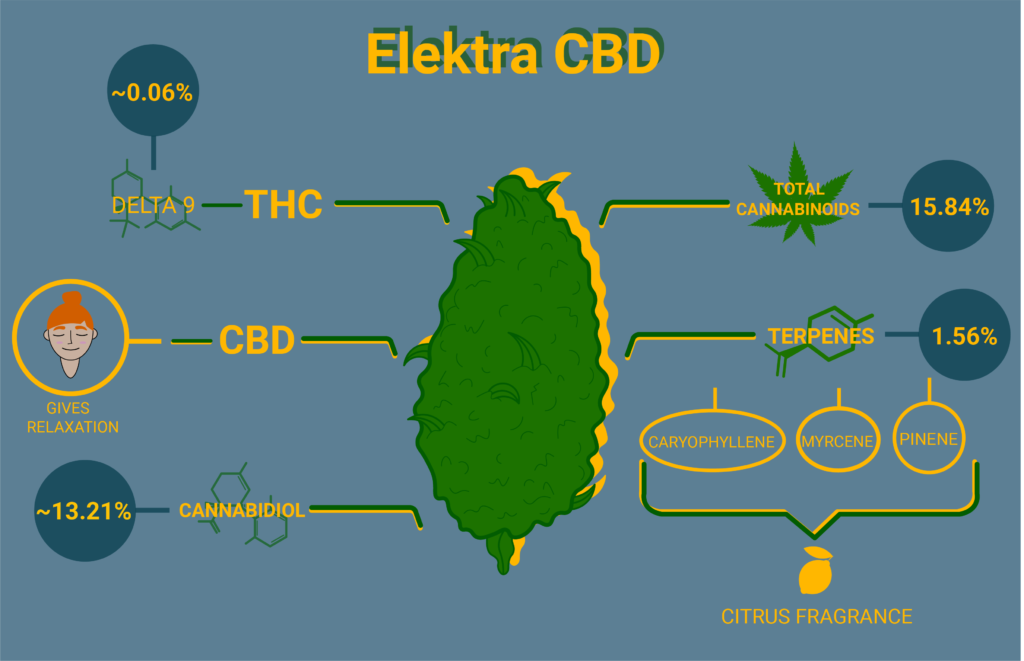 Elektra cbd strain