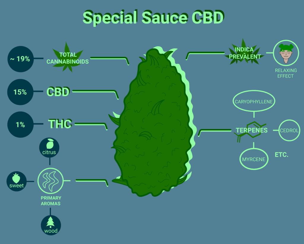Special Sauce cbd strain