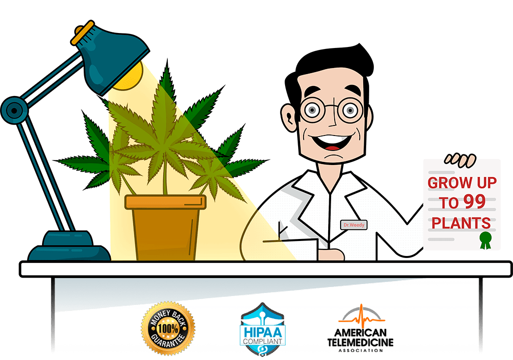 Medical Marijuana Card online - Dr. Weedy Clinic