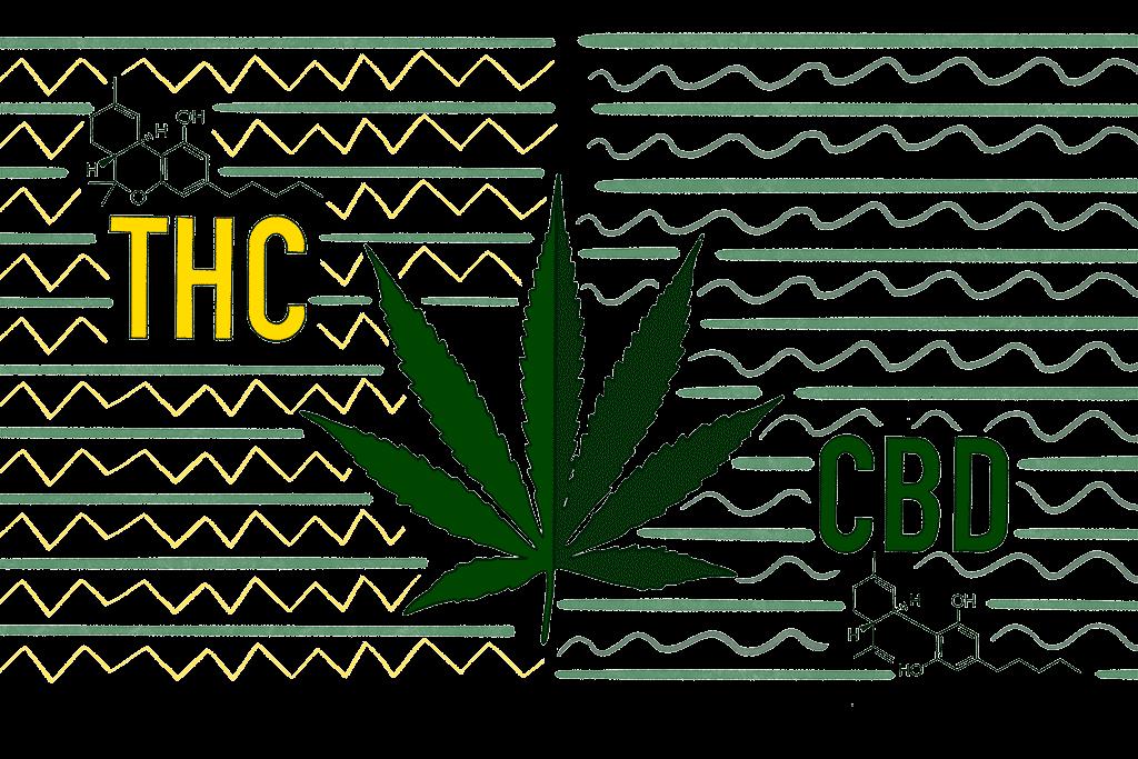 THC-and-CBD