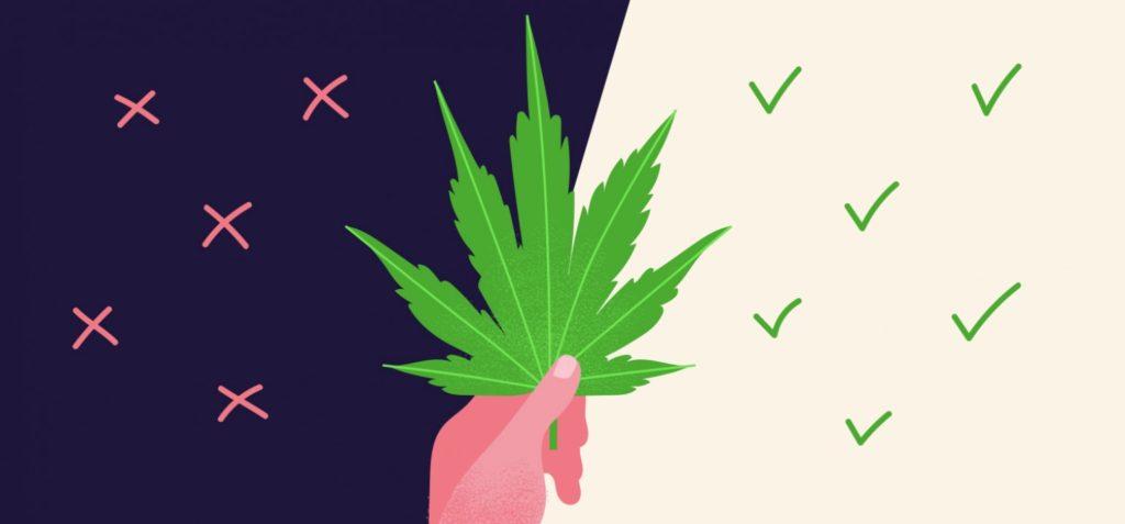 panic attacks from marijuana